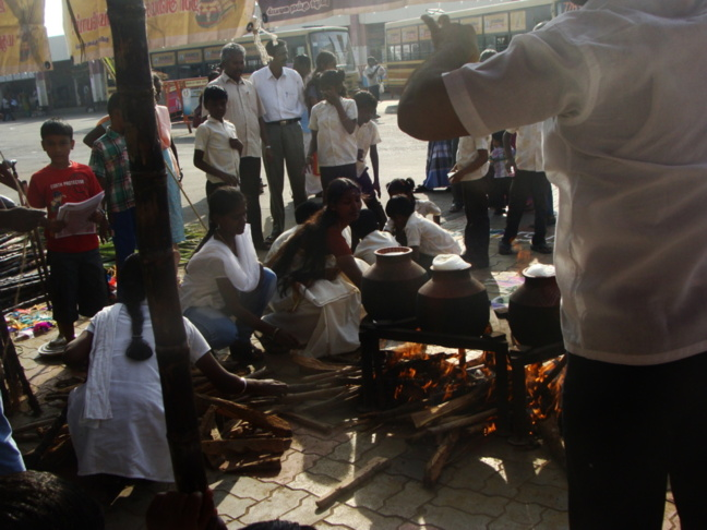 Le jour de Pongal, la cuisine se fait ensemble, peu importe sa caste