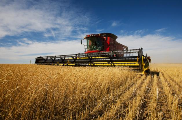 Acuerdo de libre intercambio entre la UE y EEUU: la agricultura en peligro