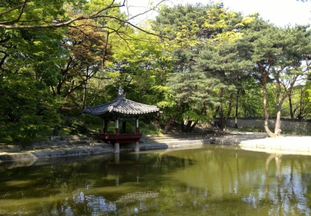 Secret Garden - Changdeokgung Palace | Crédit photo -- Axel Fix