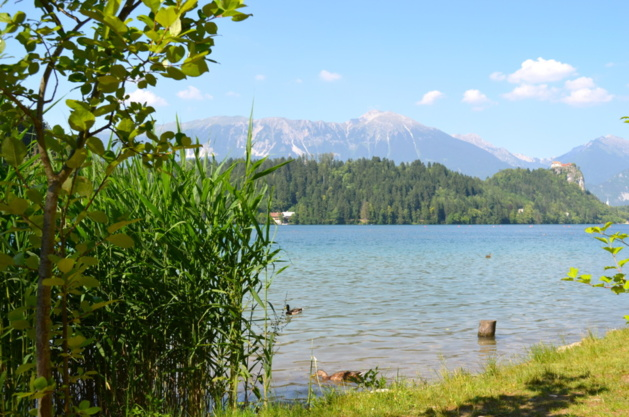 Bled | Crédits photo -- Laurène Perrussel-Morin/Le Journal International