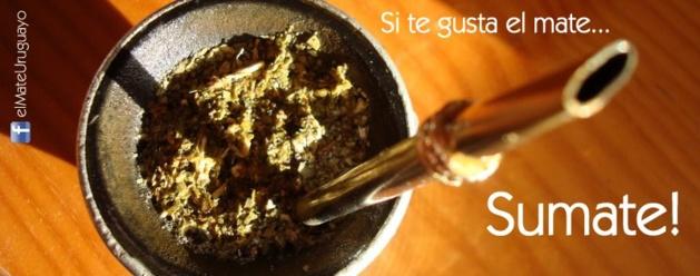 Crédits photo -- El mate uruguayo