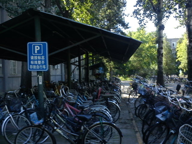 Bicycle 'parking lot' at Beijing University   Credits : Le Journal International