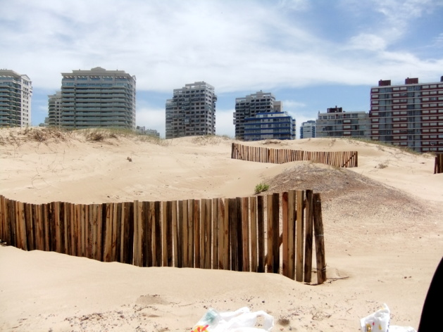 Une autre « vraie » vision de Punta   Crédits photo -- Elvire Charbonnel/Le Journal International