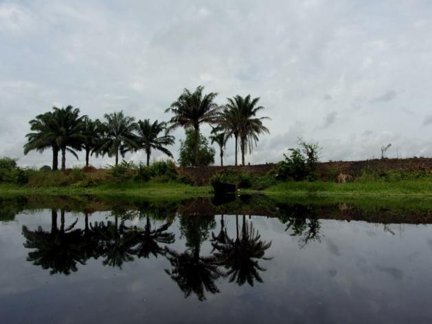 Beau reflet sur le lac du Togbo. Crédit Clara Robert de Treglode