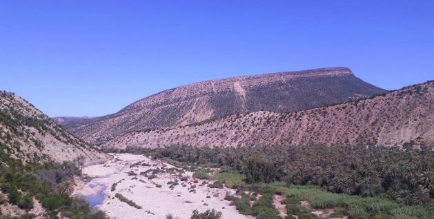 Vue de la chaîne montagneuse de l'Atlas et de la fin de l'oasis - Crédit Carolina Duarte de Jesus