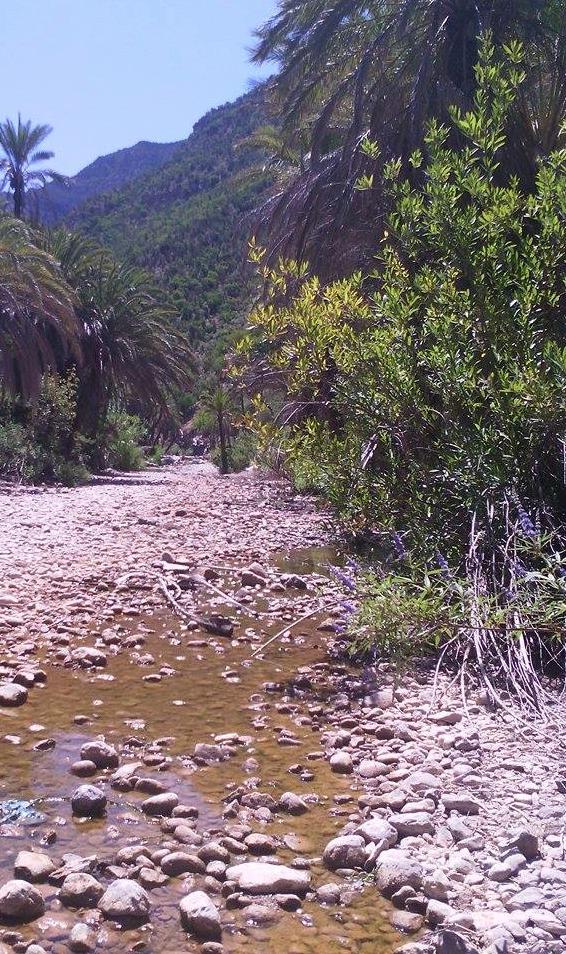 Chemin en pierre - Crédit Carolina Duarte de Jesus
