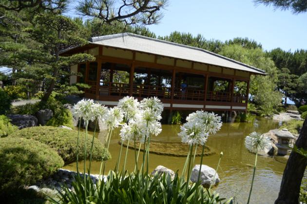 Le jardin japonais - Crédit : Auriane Guiot pour le Journal International