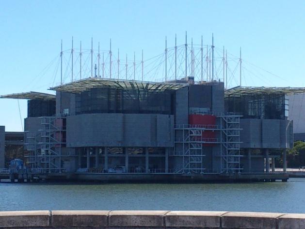 Océonarium de Lisbonne - Crédit : James le Calvez