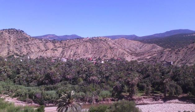 Vista sull'oasi - Fonte Carolina Duarte de Jesus