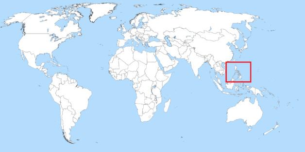 Rodrigo Duterte investi président des Philippines