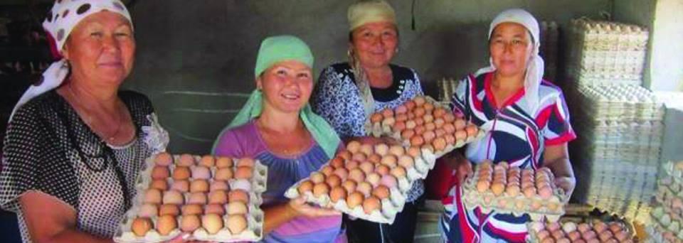 Plus de 75 000 fermiers ont reçu l'assistance de l'USAID. Crédits USAID