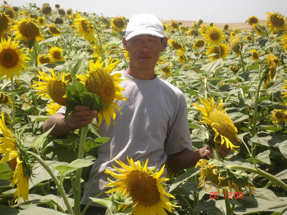 USAID soutient des projets de développement lié à l'agriculture, la santé, l'éducation et la sécurité. Crédit USAID.