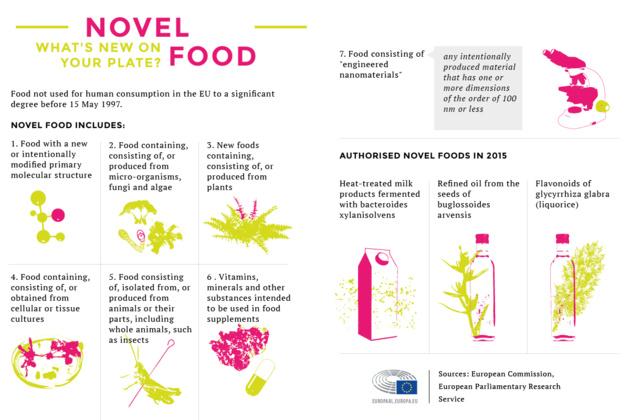 Insetti e nanomateriali: l'alimentazione del futuro è pericolosa?