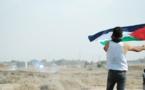 Skunk, la nouvelle arme de répression israélienne