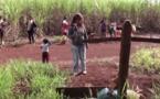 Guarani-Kaiowá, threatened people (2/3)