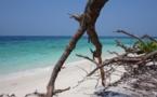 Escapade malaisienne : une plongée exotique vers la diversité (1/2)