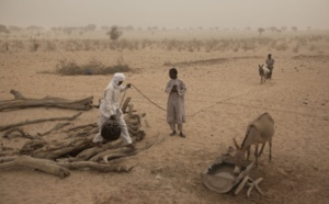 Ten years of Frontex in the Sahel (2/3)