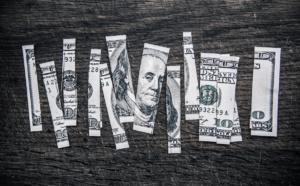 Wir : pour une biodiversité monétaire