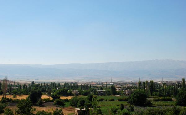 Haschich libanais : à qui profite le trafic ?