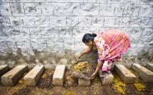Intouchables: la « Dalit community » se reveille