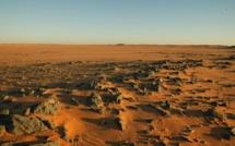 Voyage en plein désert de Nubie