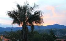 Sucre, ville oasis