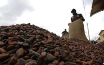 La Côte d'Ivoire ouvre sa première usine de chocolat