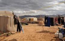 1 réfugié pour 4 habitants : le défi syrien du Liban